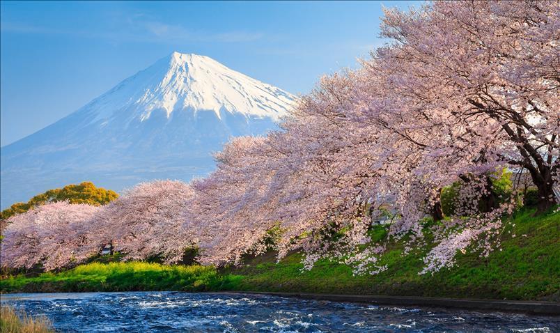 Best of Japan (4N / 5D)